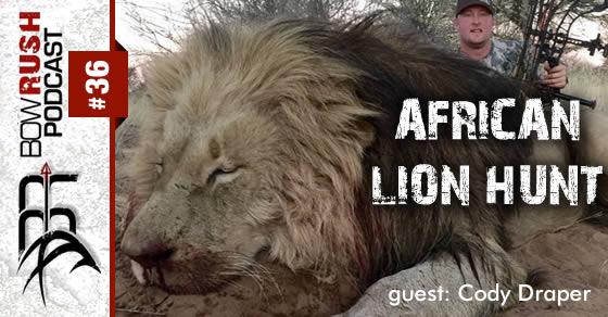 BR036 african lion hunt